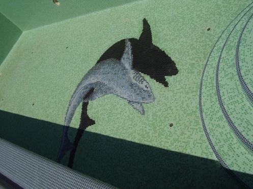 Cápa üvegmozaikból