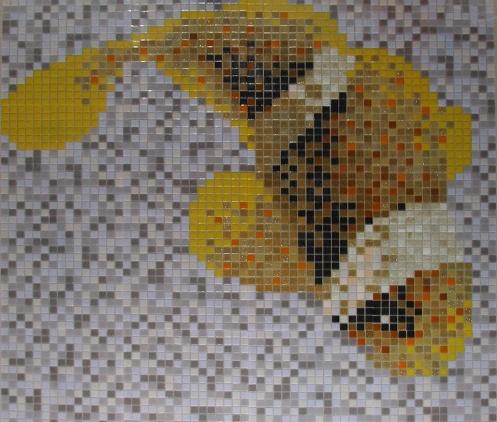 Játékos aranyhal